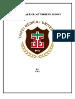 Molecular Biology Midterm Report