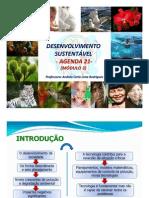 Aula 15 Des Sustentvel Agenda21