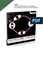 Mehow - Microloop Theory.pdf Ita