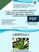 Diapositiva Final de Santy