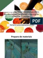 Meios-de-cultura-usados-no-laboratório-e-colorações