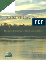 Bajo El Caudal. El impacto de las represas del río Madera en Bolivia