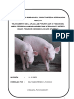 Pip Porcinos