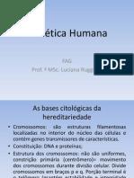 bases citológicas da hereditariedade