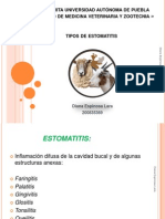 Expo Estomatitis