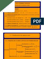 Presentacion de Los Conjuntos Numericos (Apuntes de Clase)