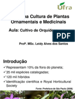 Plantas Medicinais e Ornamentais-Aula Cultivo de Orquideas-Atual