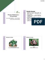 Plantas Medicinais e Ornamentais-Aula 4-Araceas