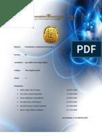 Plan Organizacional.pdf