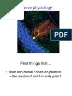 12 Nerve Physiology for Hybrid