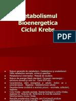 30451876-Metabolismul