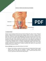endokrin and metabolik