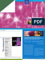 cea_lp18-nanoworld_gb.pdf