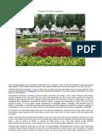 Caderno - Plantas de forração e trepadeiras