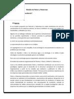 Modelo de Peters y Waterman 1 (1)