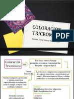 Coloracion tricromica