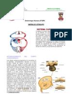 Sistema_cardiovascular Material Lectura
