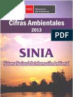 Cifras 2013.PDF