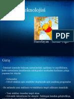 Honeypot Technologies ( Turkish )
