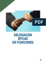 2 manual delegación funciones