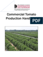 Tomato Cultivation Short