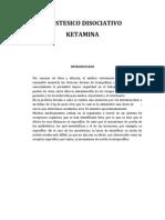 Anestesicos Ketamina en Un Felino