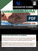 Lombricultura 2013 Altamira