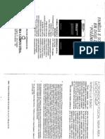 Antonio L. Paixao - A organização policial numa área metropolitana
