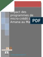 Rapport Impact Microcredit Alamana