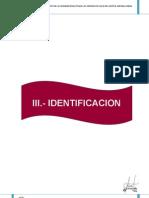 3.0.-IDENTIFICACION