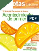 citrinotas_44