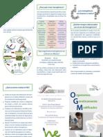 Organismos genéticamente modificados Folleto.pdf
