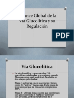 Balance Global de la Vía Glucolítica 4