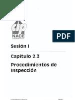 CAPITULO 2.3 Procedimientos de Inspeccion.pdf