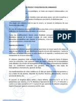 CAMBIOS FÍSICOS Y FISIOLÓGICOS DEL EMBARAZO