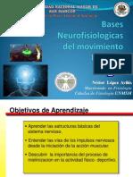 Bases Neurologicas Del Mov Humano Unmsm