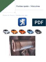 Peugeot 206 -Inlocuire Rulmenti Punte Spate(2)