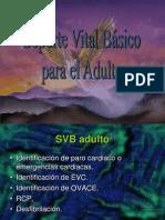 4+SVB+adultos+99