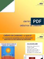 Credito Carbono