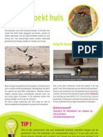Help de huiszwaluw