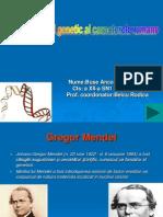 Determinismul Genetic Al Caracterelor Umane Buse Anca aXII-ASN1
