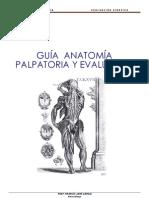 Guia de Anatomia Palpatoria y Evaluativa