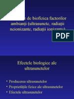 bioacustica2