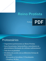 ReinoProtista-Protozoarios