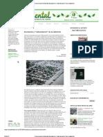 Inundación y naturalización de la catástrofe