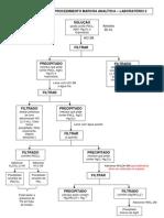 Fluxograma - marcha analítica