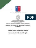 22. Papirua Dossier