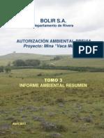 IAR BOLIR S.a. Extracciyn Mineral Oro Vaca Muerta (1)