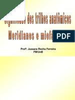 Anatomia - Significado Dos Trilhos Anatomicos, Meridianos e Miofascias