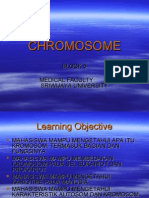 Chromosome DEFINITIF.ppt